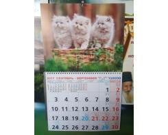 לוח שנה תלוי 48-30